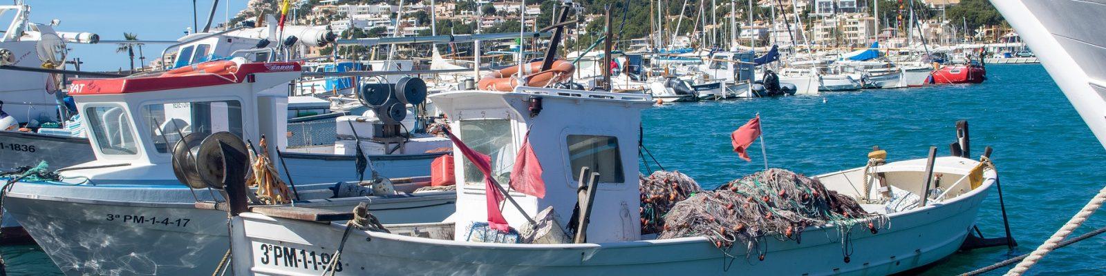 Mallorca vakantie tips